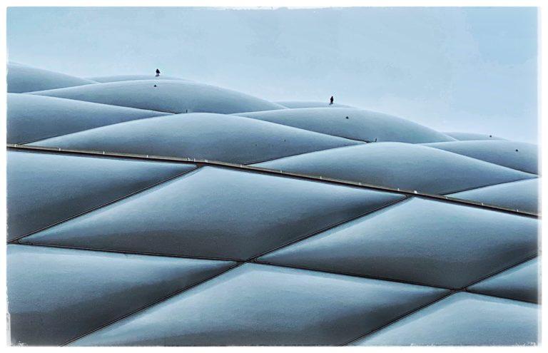 arena doves
