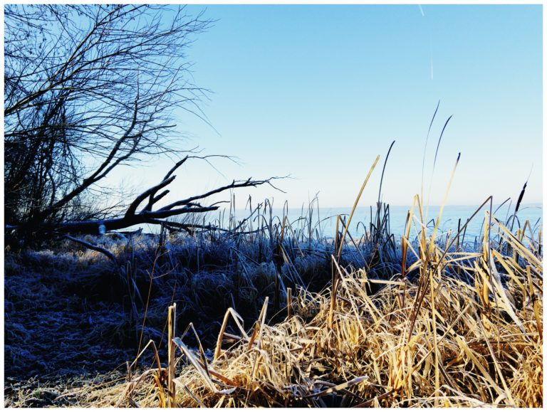 Ammersee in winter